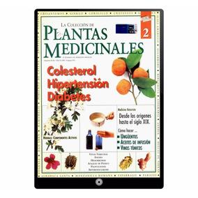 Plantas Medicinales Colesterol Hipertension Diabetes En P Df