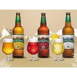 Cerveza Patagonia Amber Lager En Porron - Oferta- Zona Norte
