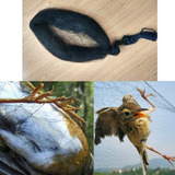 Rede Neblina Névoa, Frete Grátis, Captura Pássaros - 15x2,5m