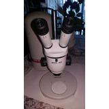 Microscopio Lupa Stereo Wild Suiza