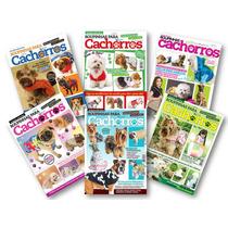 Lote De 6 Revistas Moda Pet Tecido - Roupa Cachorro Costura