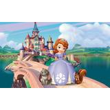 Painel Princesa Sofia 1,20 X 1,00m - Painel Infantil