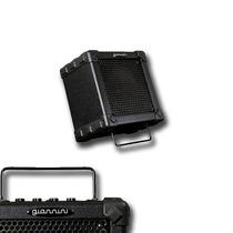 Amplificador Cubo Compacto Giannini Para Guitarra (15w Rms)
