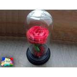 Flor La Bella Y La Bestia Rosa Eterna Roja Preservada Cf