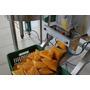 Empacotadora De Polpa De Frutas + Tanque 200 Litros + Bomba