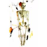 Esqueleto 1,50 M De Alto Calavera Parece Real!!! Halloween