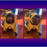 Disfraz Minnion Importado Mascota Bulldog Frances