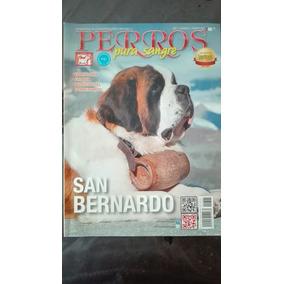 Revista Perros De Pura Sangre De La Fcm San Bernardo