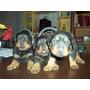 Cachorros De Rottweiler Bien Negro/fuego