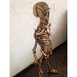 Rompecabeza 3d Didactico Esqueleto Humano 50cm