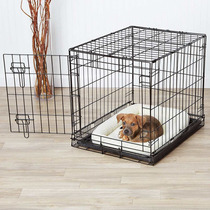 Jaula Para Perro Pequeña 24x19x18 Pulgadas *envío Gratis