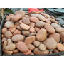 Set De Piedras Stone Masage Con Manual Stonne Massagge