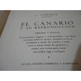 El Canario Y Su Reproduccion Origen Y Razas Carreras Palermo
