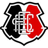 Adesivo Santa Cruz Escudo Emblema Futebol 18cm #9023