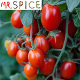 50 Sementes Tomate Sweet Grape Fruit - Puro - Frete Gratis -