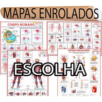 1 Mapa Enrolado Anatomia Humana Corpo Sistema - Escolha