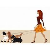 Servicio De Cuidado Y Guardería Para Perros