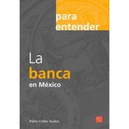 La Banca En México, Pasta Flexible