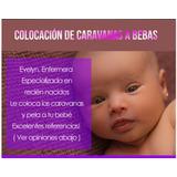 Colocación De Caravanas A Bebas Y Corte De Pelo.