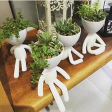 Macetas Marianitos X4 Modelos Suculentas Cactus