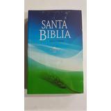 Biblia Letra Grande Lote De 5