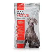 Alimento Perro Can Active Adultos X20kg *envio Gratis Caba*