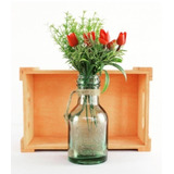 6 Vasinhos Vaso Decorativo Honey Bottle C/corda R9860
