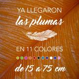 Plumas De Avestruz Male Wing De 65 A 75 Cm, En 11 Colores.