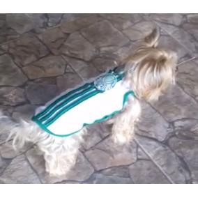 Blusa Cães Spfc Palmeiras Corinthians Santos Cachorro Animai