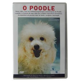 Dvd O Poodle