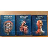 Anatomía Humana Dr Fernando Quiroz Pdf 3 Tomos