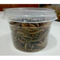 Aprov. Mapa - Tenébrio 20 Gramas - 350 Larvas Em Média