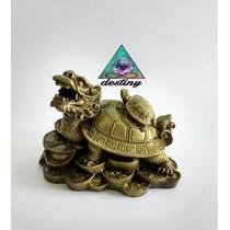 Tortuga Cabeza De Dragón - Atrayente De Fortuna Y Protección