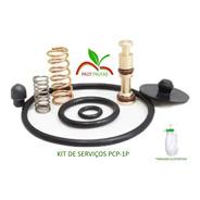 Kit Reparo Pulverizador De Compressão Prévia Pcp-1p Guarany