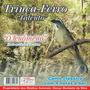 Cd Canto Pássaros Trinca Ferro- Canto Clássico+ 4 Notas+ Boi