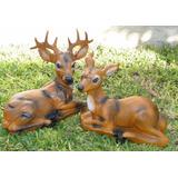 Bambi Venado Ciervo 43cm Resina Decora Tu Casa Y Jardín