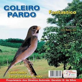 Cd Coleirinha Pardo Fantástico Tui Tui Zel Zel + 3ª Nota