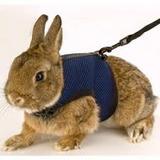 Arnes Para Conejos Enanos, Medianos Y Grandes