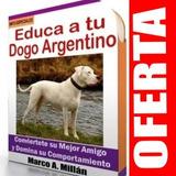 Guía De Entrenamiento Para Perro Dogo Argentino 2