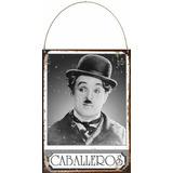 Cartel De Chapa Vintage Retro Baño Caballeros L338