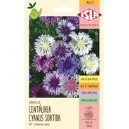 Sementes De Centáurea Cyanus Sortida Flor