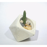 Materos O Maceta Minimalistas De Concreto Pequeños Cactus