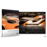 Absynth + Amplitube + Sessions Acoustic G + Horns + Strings