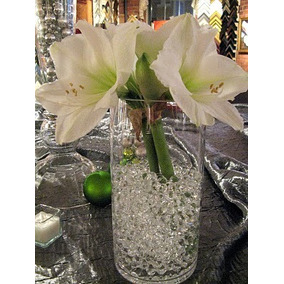 Hidrogel En Perlas Transparentes 100 Gramos Aluzza