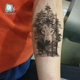 Tatuagem Grande Modelo Lobo... Índio
