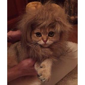 Disfraz Para Gato Melena De León