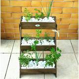 Horta Verdura Vertical Escada Para Apartamentos