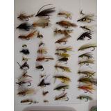 Moscas Pesca Cajas