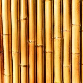 Varas De Bambu Seco En Mercado Libre Mexico - Bambu-seco