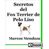 Fox Terrier De Pelo Liso Libro Adiestramiento Canino